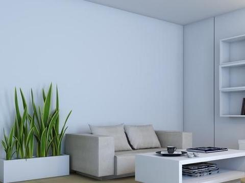 墙面装修,选硅藻泥还是护墙板?