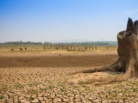 巴西面临近百年以来最严重旱情