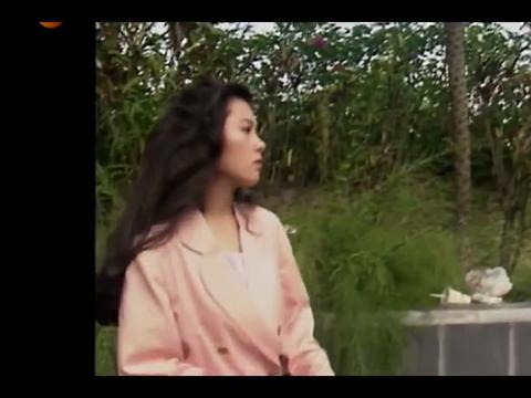 刘青云发现蓝洁瑛喜欢上自己,但自己顾着事业