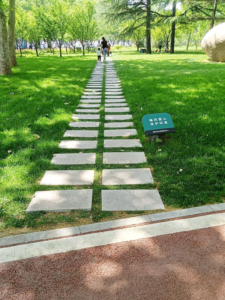 """淄博将对城市公园场所进行""""微改造"""""""