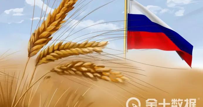 俄罗斯禁止出口荞麦禁令正式生效,中国是其最大买家