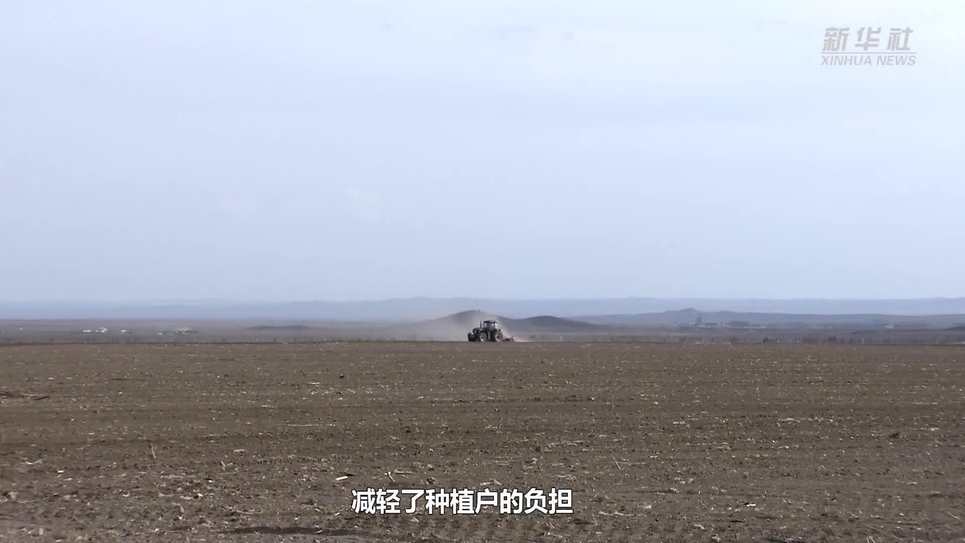 新疆青河县:完成18000亩脱毒马铃薯播种
