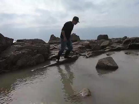 30斤猪血撒巨龙坑,各种鱼群乱窜于杂石缝中,泰泰抓得气喘吁吁