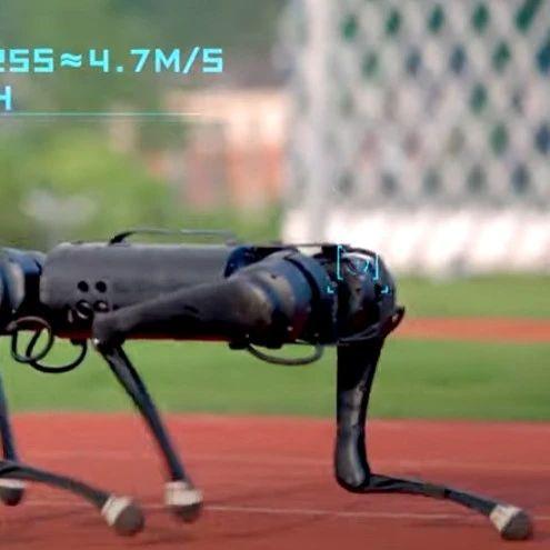 新晋网红机器狗实力圈粉:2700美元,速度创纪录,还能自主避障