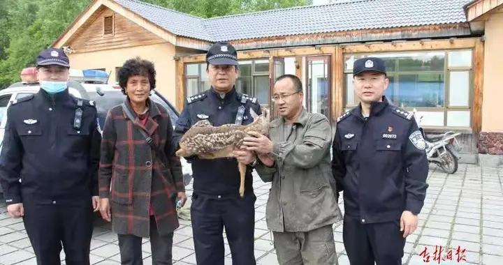 """长白山野生动物救助站:让受伤的动物有""""新家"""""""