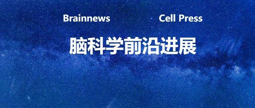 Cell:颠覆传统,艾伦脑研究所分析130万个细胞,揭示同型皮质和海马的细胞组成特征