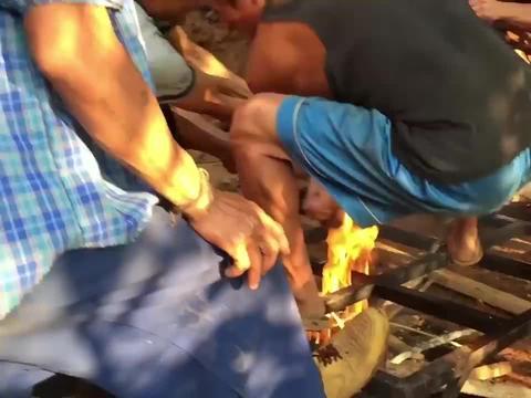 实拍印尼烤全猪过程,从活猪一点点变得金黄流油,隔着屏幕流口水