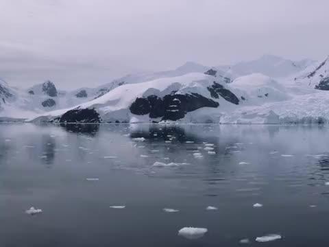 南极一处冰川流出血水,科学家前往调查,发现令人后怕的因果!