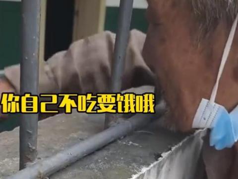 一位四川的老婆婆得了老年痴呆症,爷爷隔窗摸着头:要听话!