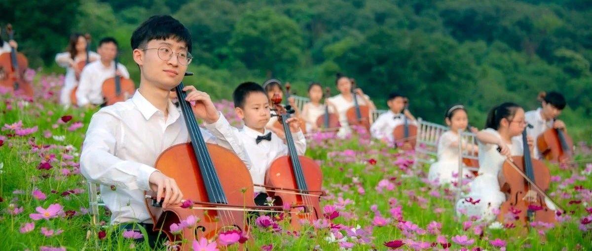 拈花湾梵天花海百人大提琴合奏