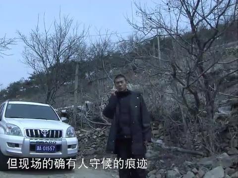 影视:毒枭运送大量毒品,自以为天衣无缝,怎料下秒就被警方包围