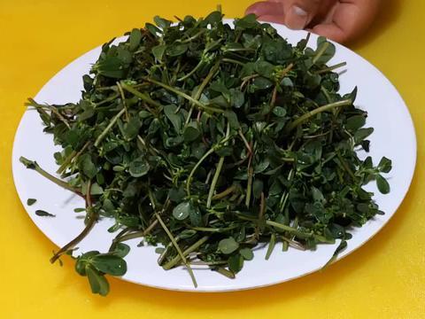 这野菜浑身都是宝,可惜很多人当草,经常上火多吃点,凉拌吃特香