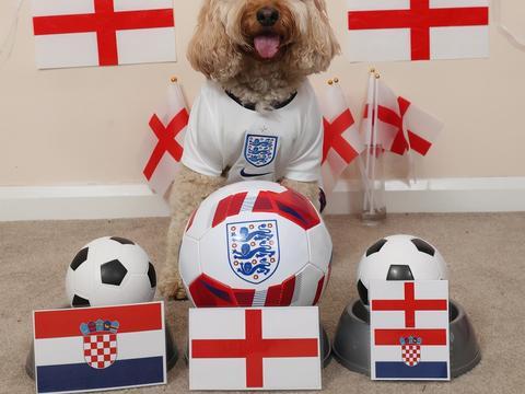 曾预测准欧冠美国大选,认为英格兰取胜