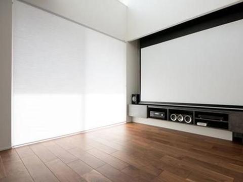 这是客厅的装修模板,幕布装在电视柜里,投影和电视我都要了
