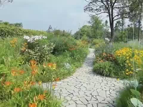 夏天是莫奈的花园田园生活