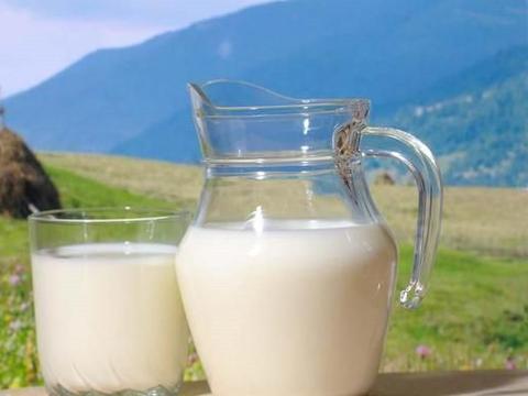 酸奶和纯奶,哪一种适合老年人喝?为了老人的健康,来了解一下