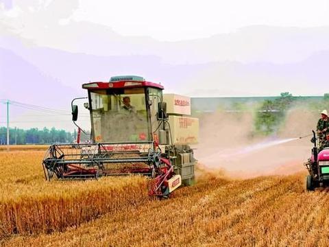 """农民收麦""""花400元""""洒水降尘:割麦竟污染环境?"""