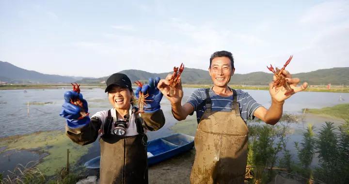 江西彭泽:小龙虾产业集群助农增收 引电商巨头产地溯源
