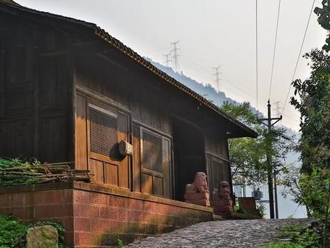 湖南有个小县城,盛产黑茶,当地人在茶园种了花,如今游客络绎!