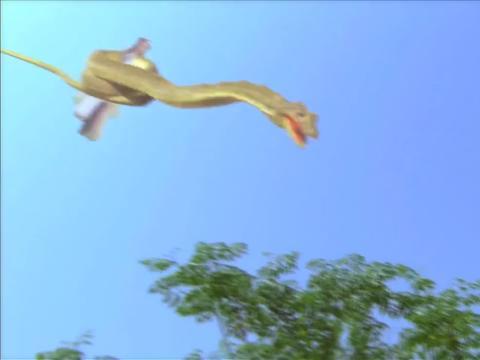 女孩被巨蟒抓走,下秒惊动了天上的神仙,英雄救美