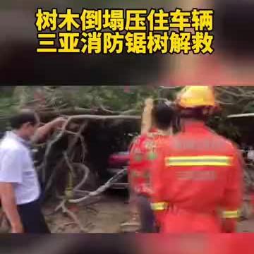受热带气旋影响,三亚一停车场树木倒塌压住车辆,消防锯树解救