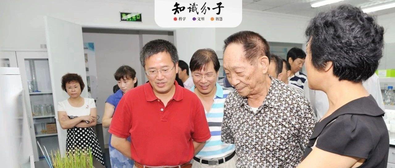 袁隆平和我国杂交水稻研究简史