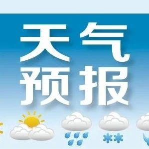本周最高气温29℃