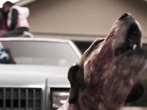 狗狗困住两小孩,竟是为了救主人一命