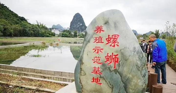 端午假期,柳州市共接待游客124.96万人次