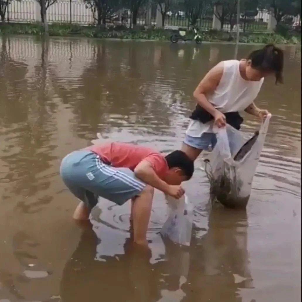 """暴雨侵袭濮阳""""最美情侣""""徒手清理排水口..."""