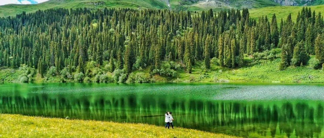 一到夏天,这里就成了新疆最美的地方。