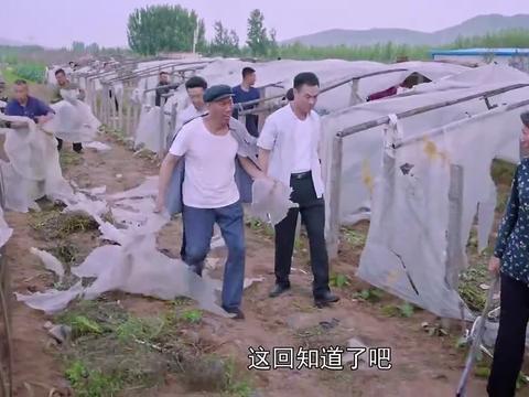 兰桐花开:村子遭灾,受全村恩惠的高材生,直接拿出一包钱发红包