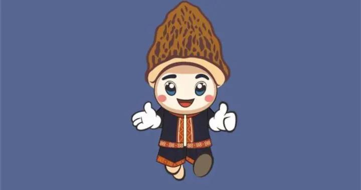 中国食用菌全产业链创新发展大会吉祥物黔小君贵小妹来啦