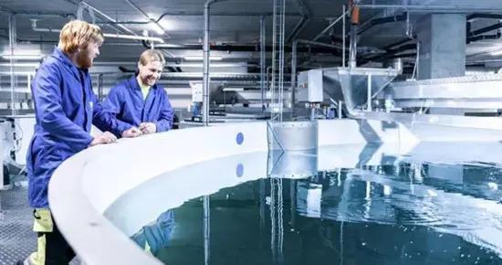8F收购挪威RAS服务商Kruger Kaldnes,与Pure Salmon进行业务整合
