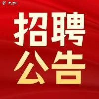 【最新招教公告】河南省各地区公开招聘教师名!