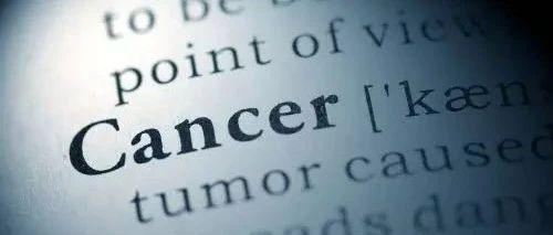 癌症的帮凶,新研究发现分泌型凝胶蛋白可抑制机体的癌症免疫力