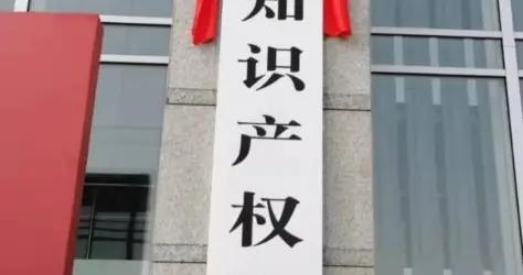 服务保障重庆创新驱动发展 重庆知识产权法庭揭牌成立