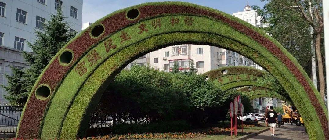 """黄河路沿线五色草造型景观上新了 """"绿色城堡""""""""大花瓶""""""""龙灯笼"""",全是精品"""