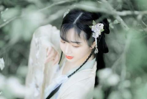诗·九首丨秋色遥怜桐叶雨,夜声还报稻花风