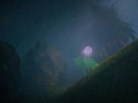 天乩之白蛇传说:小白采摘八心莲子受伤了,还好有她出现了