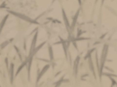国画精赏:明 周天球 水仙图卷 - 平铺式绘水仙,气韵清新雅致
