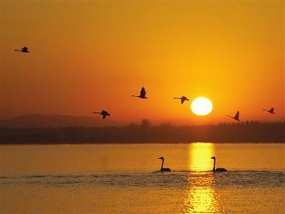 绿水青山孕育华彩渔阳── 蓟州区全面保护生态环境高质量发展硕果累累