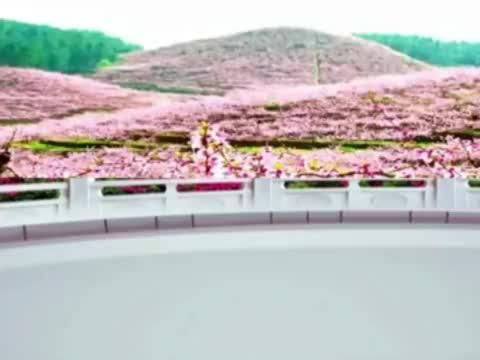网红DJ广场舞《小可爱》热歌热舞 音乐好听 舞步新颖 正背面演绎