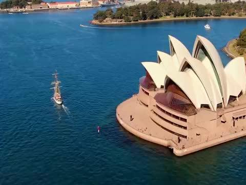 这场灾难已持续数百年,澳大利亚方法用尽,至今仍束手无策