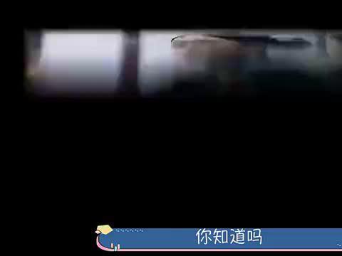 延禧攻略:娴妃为什么要隔着柱子勒死嘉嫔?堪称全剧最高的智商