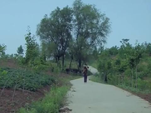 宝贝儿回家:富家子被人贩子卖到山里,生活发生了翻天覆地的变化