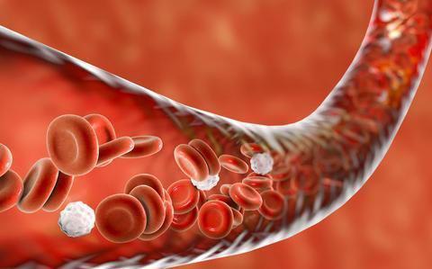 """胆固醇过高怎么办?日常少吃这""""3种""""食物,或可让血脂缓缓降下"""