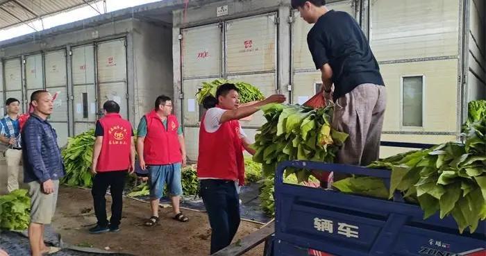 道县烟草局党员志愿者深入蚣坝镇开展助农活动
