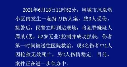 辽宁凤城发生一起持刀伤人案,致1死2伤