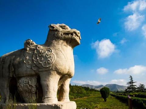 陕西不出名小众县城,坐拥7座博物馆,为渭南面积第二大县